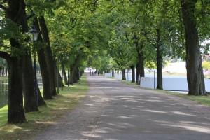 Allee im Schlosspark Schwerin
