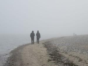 Nebel in Dänisch-Nienhof am Ostseestrand