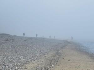 Dänisch-Nienhof Strand bei Nebel