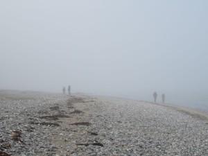 Strand Dänisch-Nienhof Schwedeneck Nebel