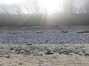 Sonnenstrahlen Strand Dänisch-Nienhof