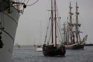 Segelschiffe auf der Hanse Sail in Warnemünde