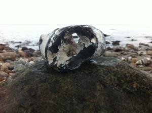 Hühnergott Feuerstein an der Ostsee
