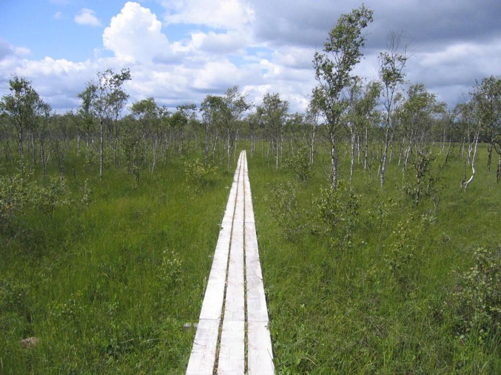 Nationalpark Store Mosse