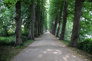 Allee am Schloss Eutin