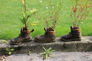 Blumentopf: Pflanzen in Schuhen