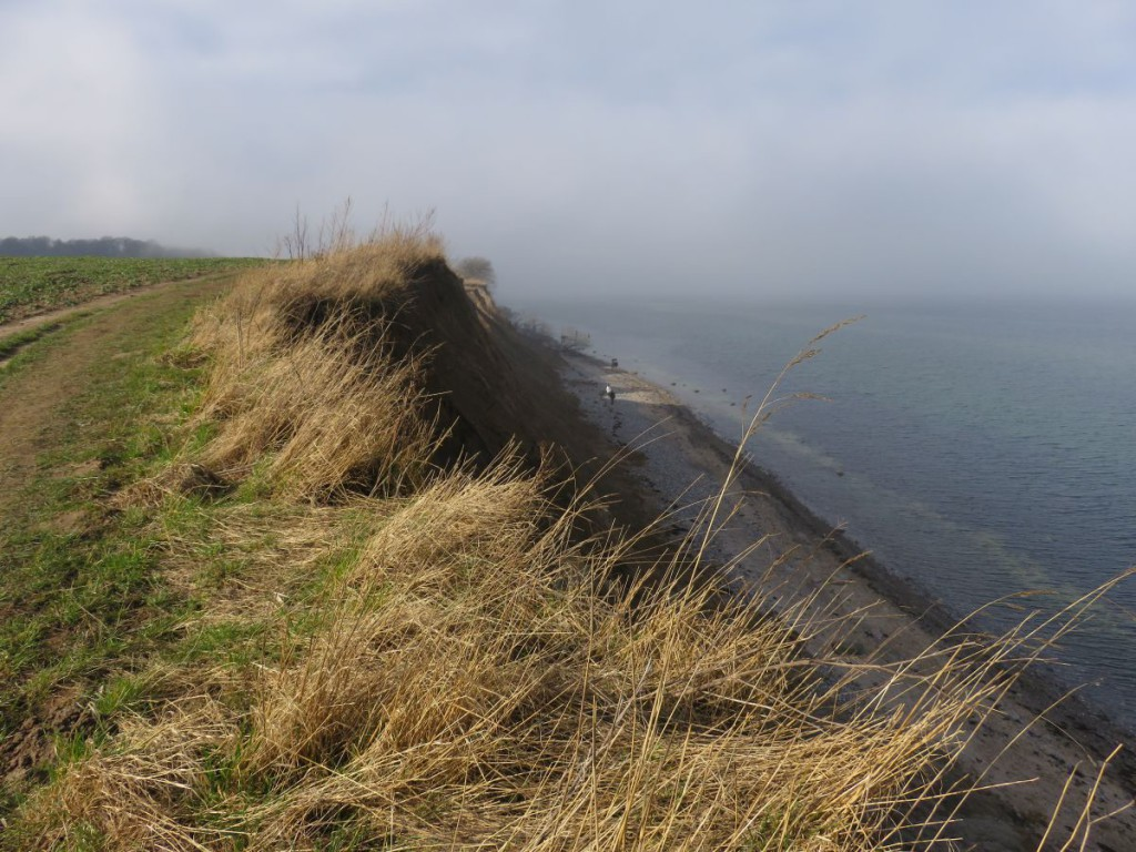 Steilküste Ostsee Dänisch-Nienhof