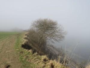 Steilküste Dänisch-Nienhof Nebel an der Ostsee