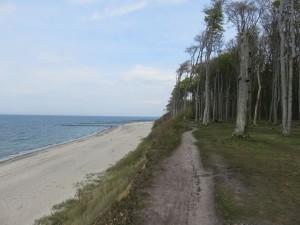 Steilküste Ostseebad Nienhagen Gespensterwald