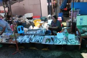 Frischer Fisch auf dem Markt in Surat Thani