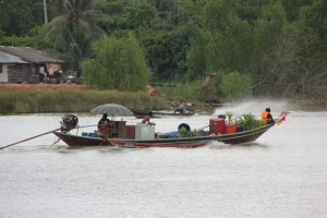 Boot auf dem Fluss Ta Pi in Surat Thani