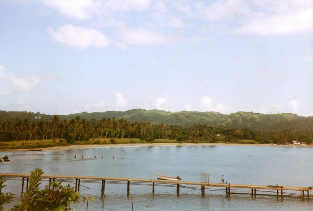 Bootssteg auf Tobago in der Karibik