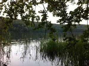 Ukleisee Ufer