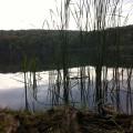 Am Ufer des Ukleisees