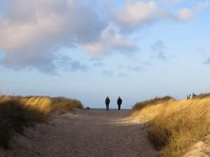 Warnemünde Dünen Ostseestrand