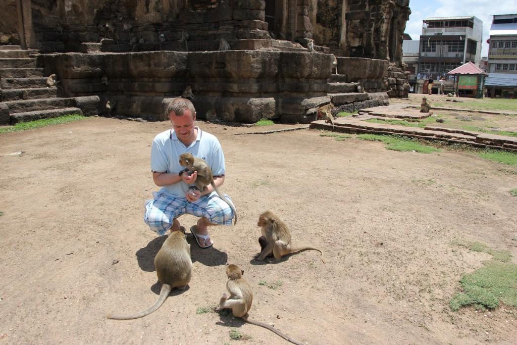 Affenfütterung in Lop Buri am Phra Prang Sam Yot