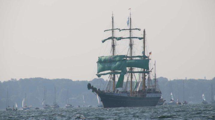Segelschiff Alexander von Humboldt II