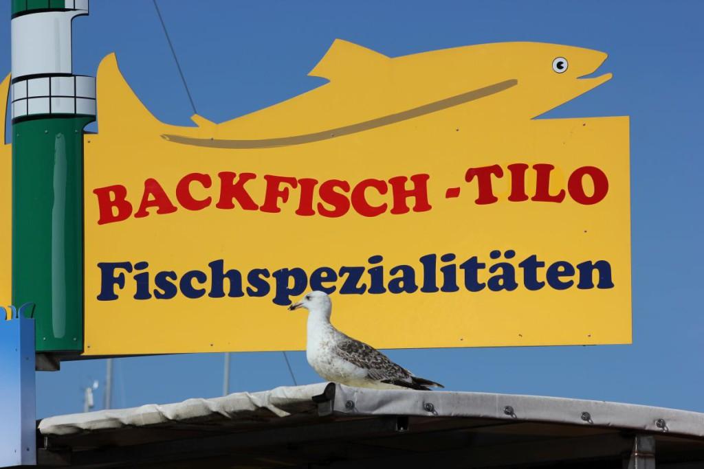 Backfisch Tilo Warnemünde am Alten Strom