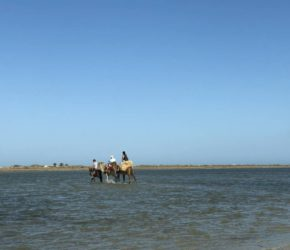 Blaue Lagune Djerba