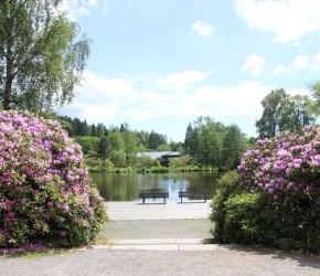 Kurpark Braunlage
