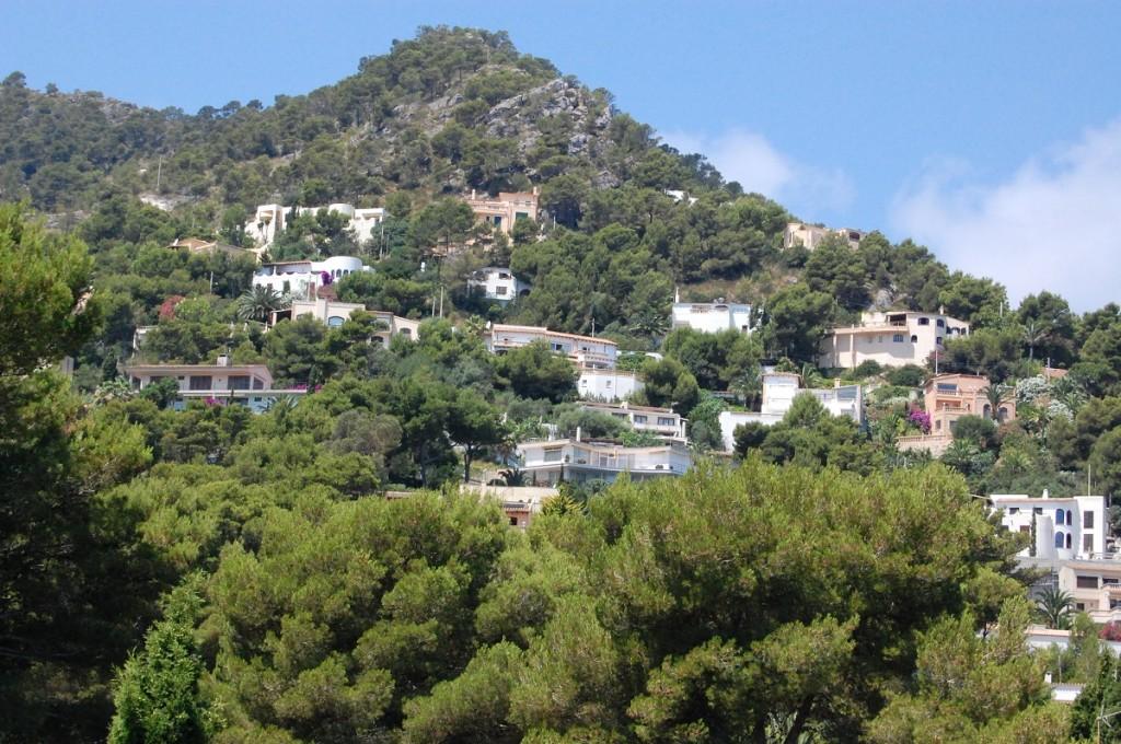 Berghang Costa de Canyamel