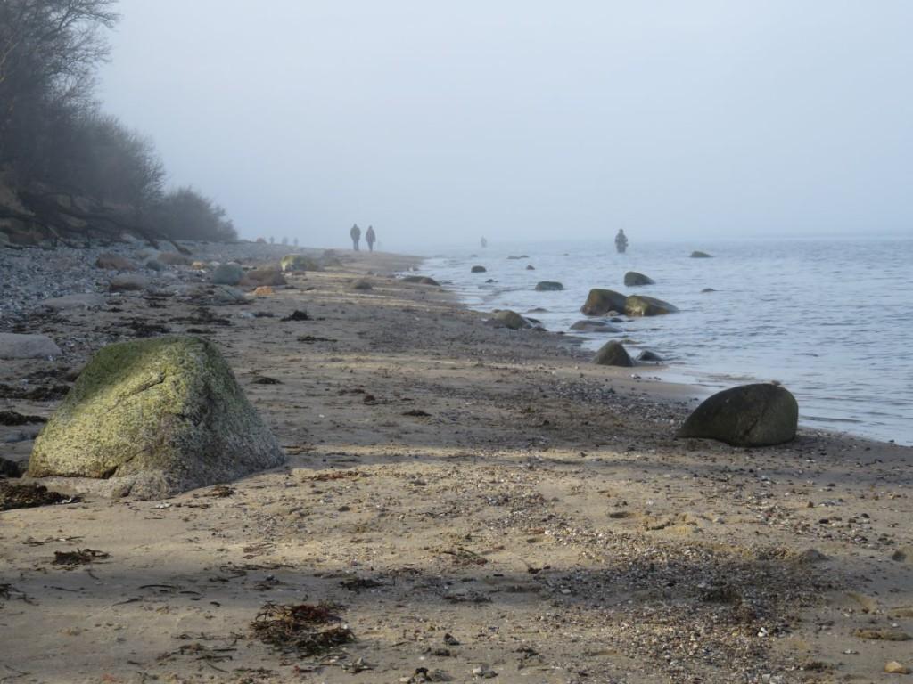 Dänisch-Nienhof Naturstrand Nebel an der Ostsee