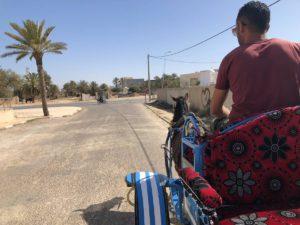 Djerba Kutsche fahren