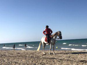 Ausritt am Strand von Djerba