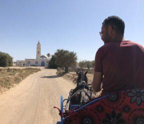 Entspannte Kutschfahrt auf Djerba