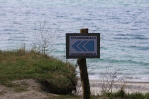 Gespensterwald Nienhagen Hinweisschild zum Strand