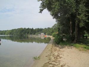 Badebereich am Großen Plöner See Höhe Fegetasche an der B76