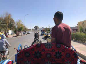 Kutschfahrt auf Djerba