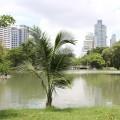 See im Lumphini-Park Bangkok
