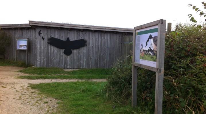 Eck-Hide (Beobachtungsstand) im NABU Wasservogelreservat Wallnau auf Fehmarn