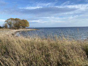 Ostsee Strand Bülk bei Kiel