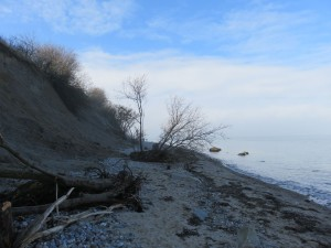 Steilküste Dänisch-Nienhof an der Ostsee in Schleswig-Holstein