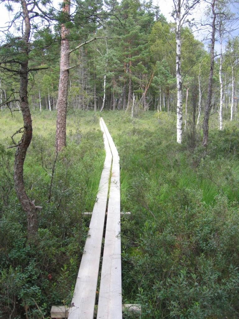 Nationalpark Store Mosse Schweden
