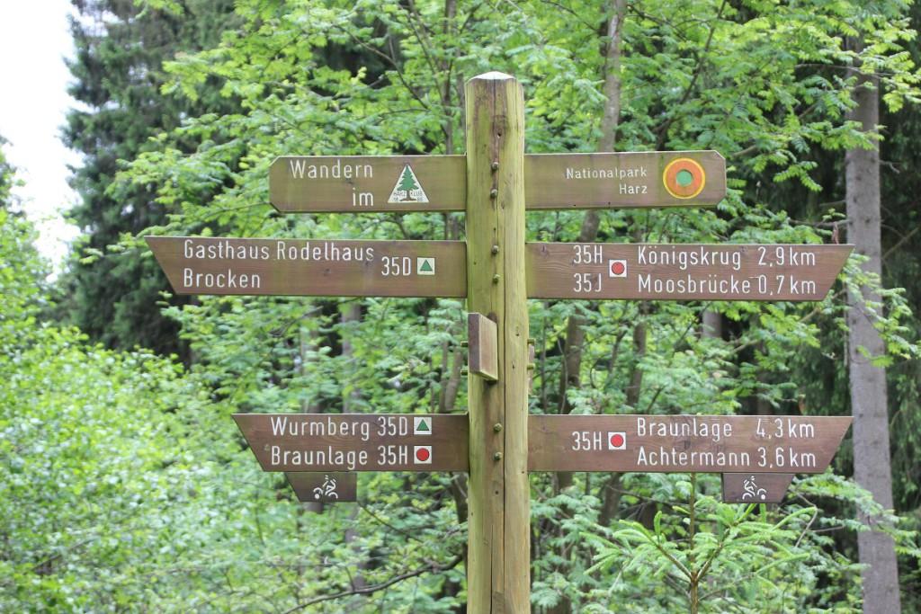 Wegweiser im Wald auf dem Weg vom Wurmberg nach Braunlage