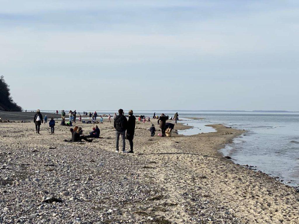 Ostsee Strand Dänisch-Nienhof 22.02.2021